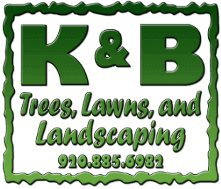 K&B Trees, Lawns, and Landscaping